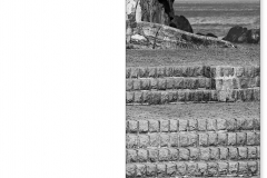 110210-31  TRIPTICO PEINE DEL VIENTO BN-C copia
